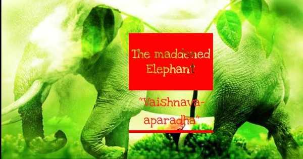 """""""The Maddened Elephant"""" VAISHNAVA APARADHA (English/Bengali)"""