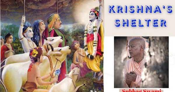 Krsna's Shelter...